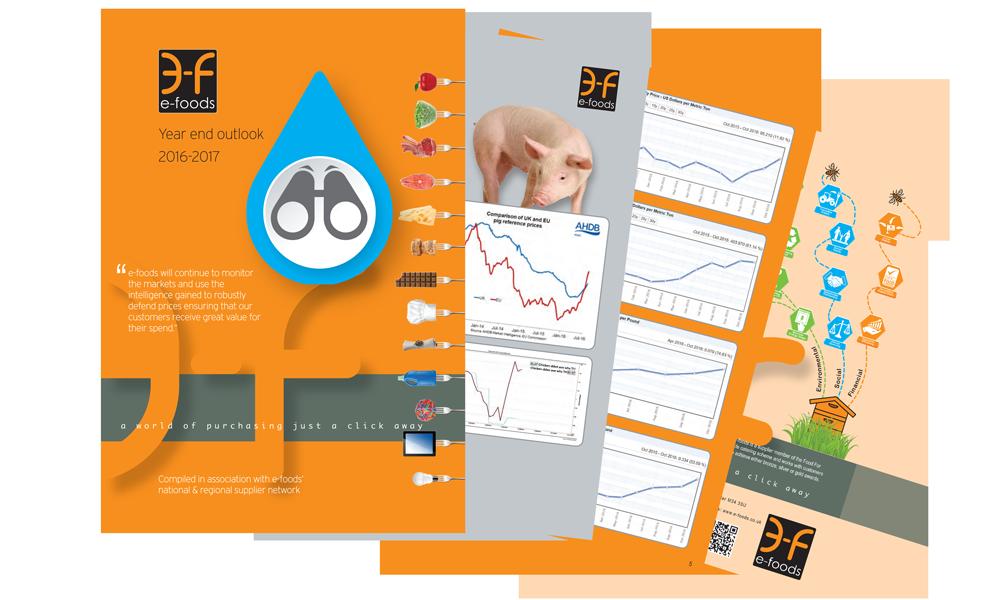 e-foods market report 2017