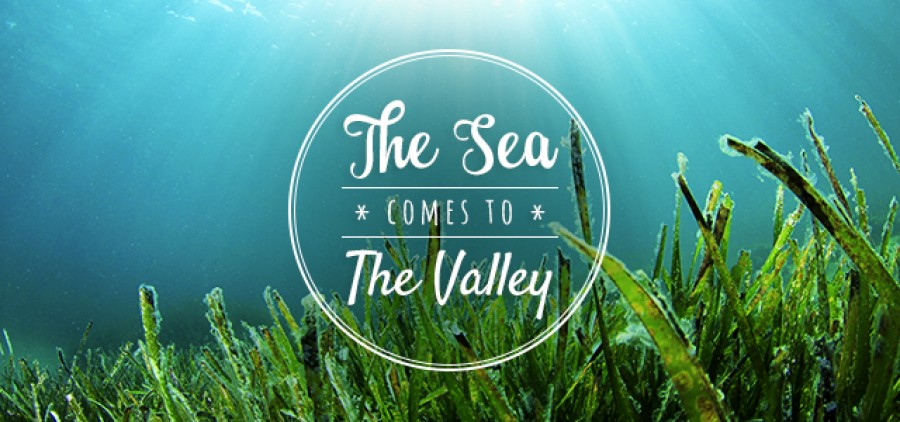 The Sea comes to the Valley – SOLD OUT